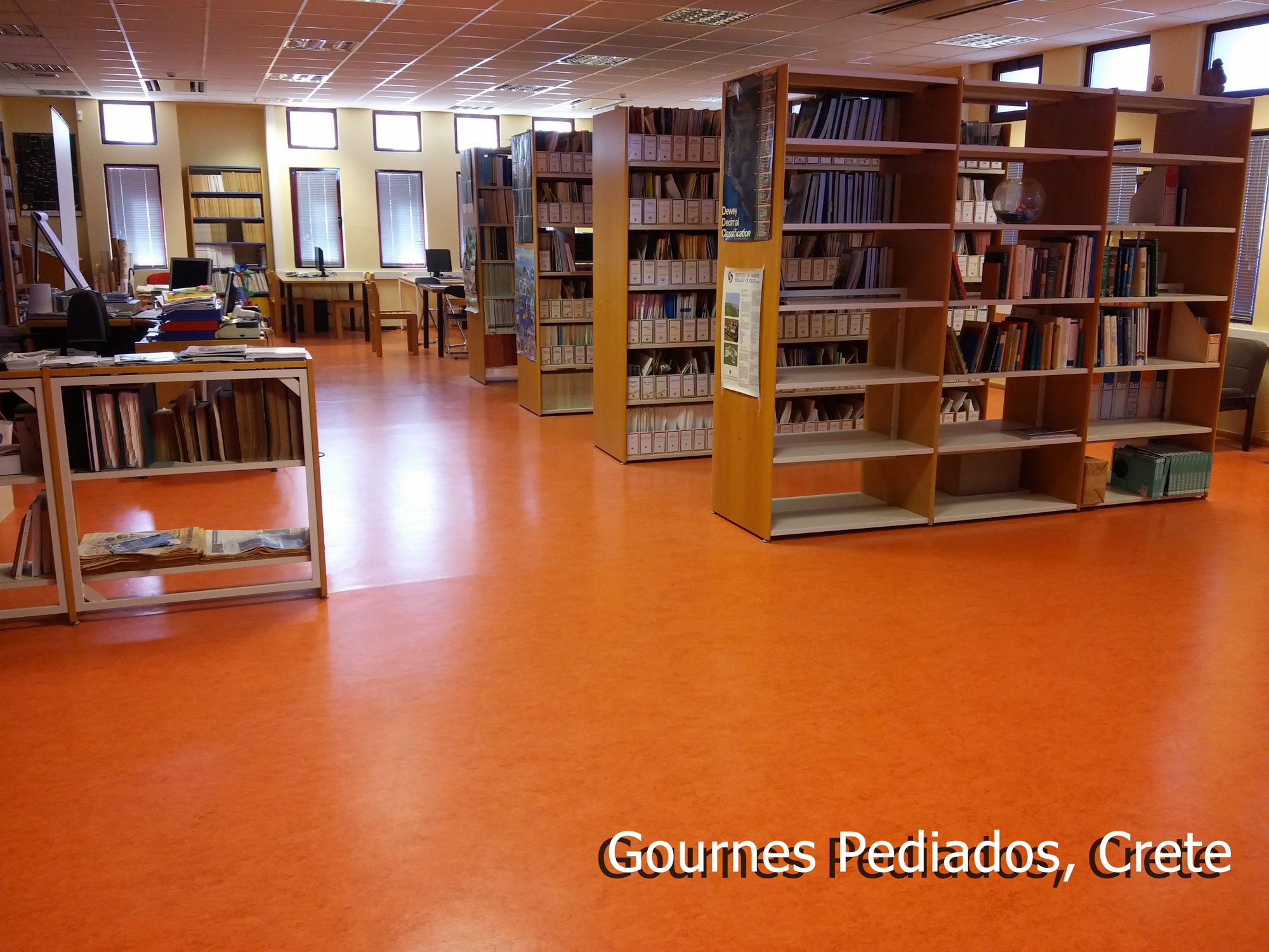 libraryCrete1