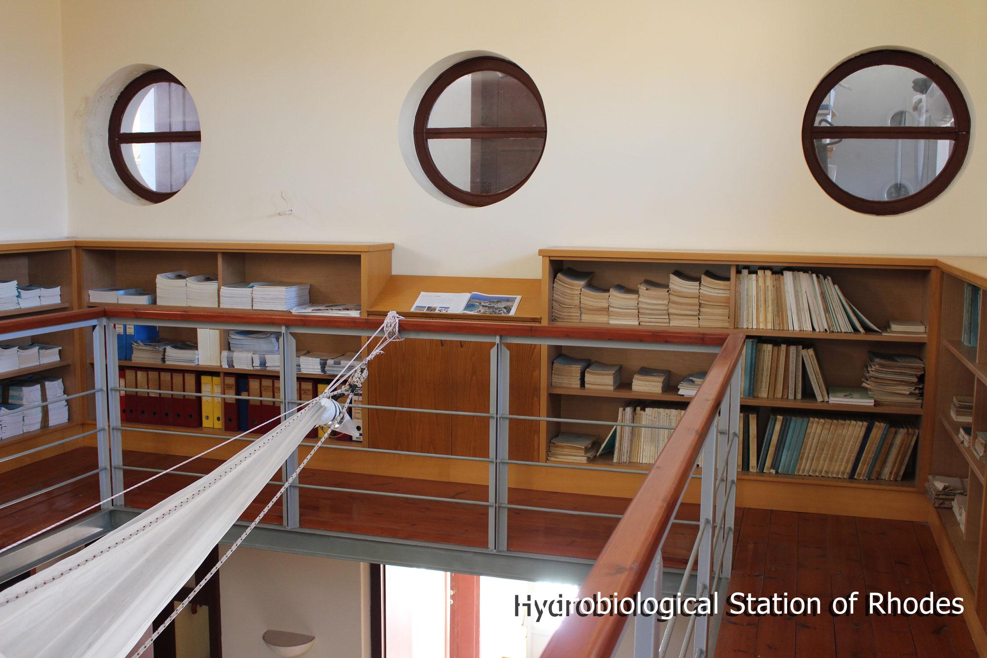 libraryRhodes3